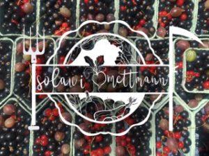 www.solawi-mettmann.de